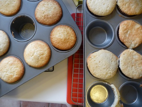 Cupcakes.1